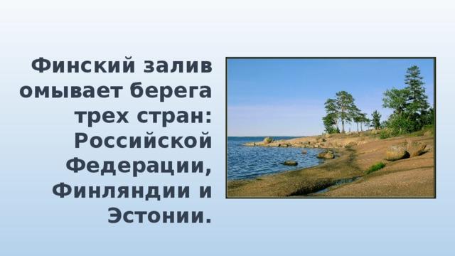 Финский залив омывает берега трех стран: Российской Федерации, Финляндии и Эстонии.
