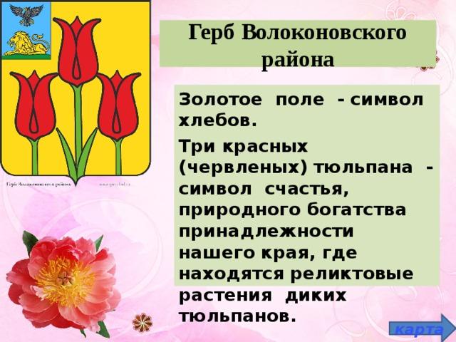 Герб Волоконовского района Золотое поле - символ хлебов. Три красных (червленых) тюльпана - символ счастья, природного богатства принадлежности нашего края, где находятся реликтовые растения диких тюльпанов.  карта