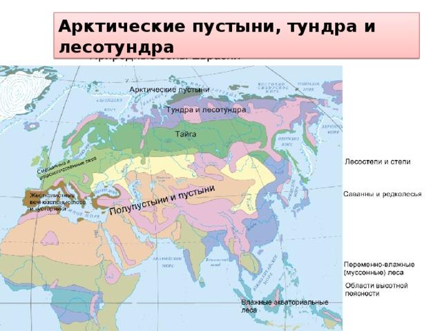 Арктические пустыни, тундра и лесотундра