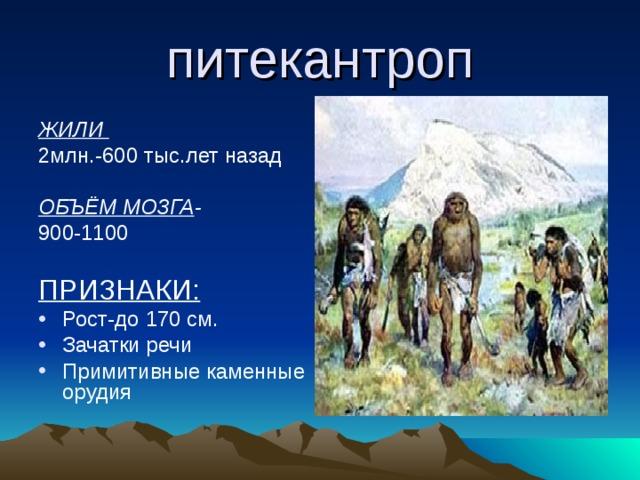 питекантроп ЖИЛИ 2млн.-600 тыс.лет назад ОБЪЁМ МОЗГА -  900-1100 ПРИЗНАКИ: