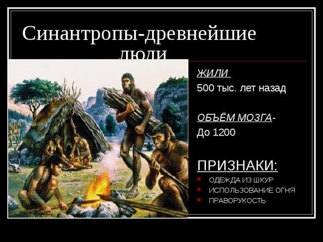 Синантропы - древнейшие     люди ЖИЛИ 500 тыс. лет назад ОБЪЁМ МОЗГА -  До 1200 ПРИЗНАКИ: