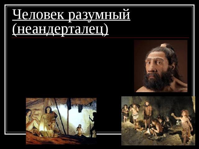 Человек разумный (неандерталец) 1. жили в пещерах;  2. шили одежду;  3. добывали огонь;