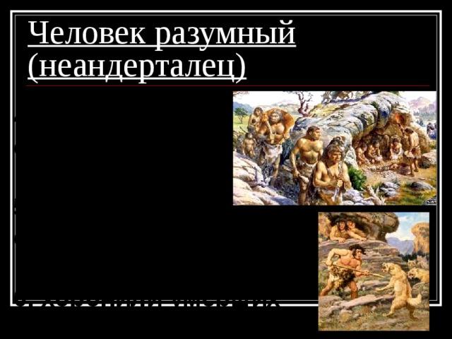 Человек разумный (неандерталец) 4. коллективная охота;  5. заботились о стариках и калеках;  6. хоронили умерших