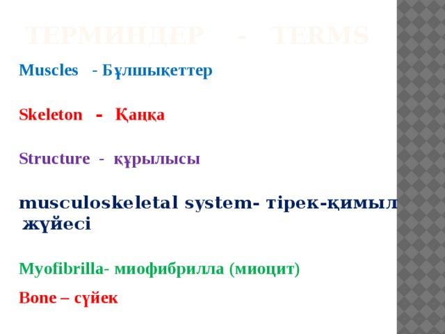 Терминдер - Terms Muscles - Бұлшықеттер  Skeleton - Қаңқа  Structure - құрылысы  musculoskeletal system- тірек-қимыл жүйесі  Myofibrilla- миофибрилла (миоцит)  Bone – сүйек