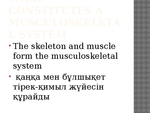 what constitutes a musculoskeletal system