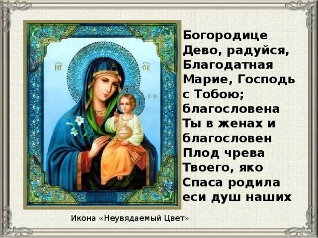 Богородице Дево, радуйся, Благодатная Марие, Господь с Тобою; благословена Ты в женах и благословен Плод чрева Твоего, яко Спаса родила еси душ наших Икона «Неувядаемый Цвет»