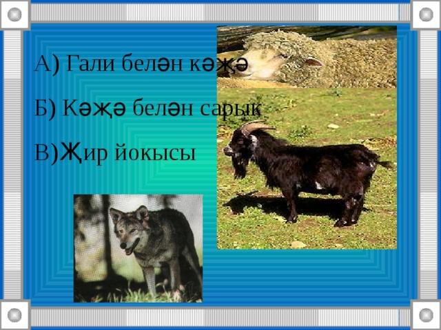 А) Гали белән кәҗә Б) Кәҗә белән сарык В)Җир йокысы