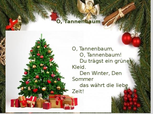 O, Tannenbaum O, Tannenbaum,  O, Tannenbaum!  Du trägst ein grünes Kleid.  Den Winter, Den Sommer  das währt die liebe Zeit!