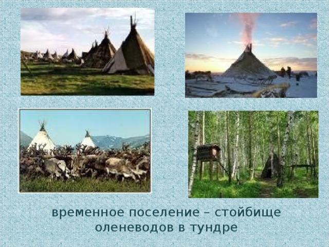 временное поселение – стойбище оленеводов в тундре