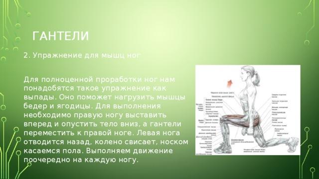 гантели 2. Упражнение для мышц ног Для полноценной проработки ног нам понадобятся такое упражнение как выпады. Оно поможет нагрузить мышцы бедер и ягодицы. Для выполнения необходимо правую ногу выставить вперед и опустить тело вниз, а гантели переместить к правой ноге. Левая нога отводится назад, колено свисает, носком касаемся пола. Выполняем движение поочередно на каждую ногу.