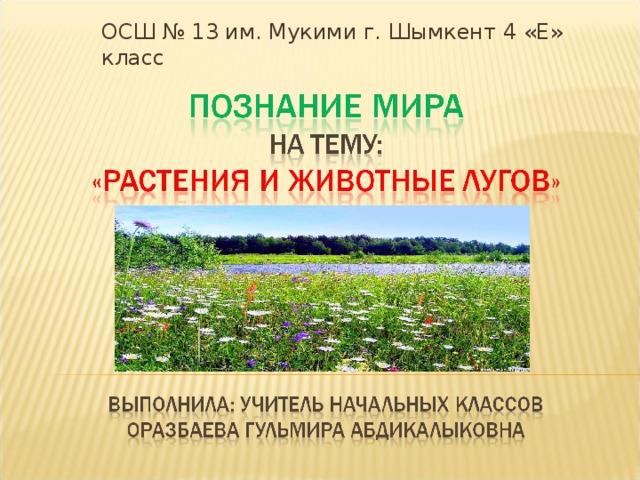 ОСШ № 13 им. Мукими г. Шымкент 4 «Е» класс