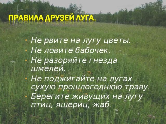 Не рвите на лугу цветы. Не ловите бабочек. Не разоряйте гнезда шмелей. Не поджигайте на лугах сухую прошлогоднюю траву. Берегите живущих на лугу птиц, ящериц, жаб .