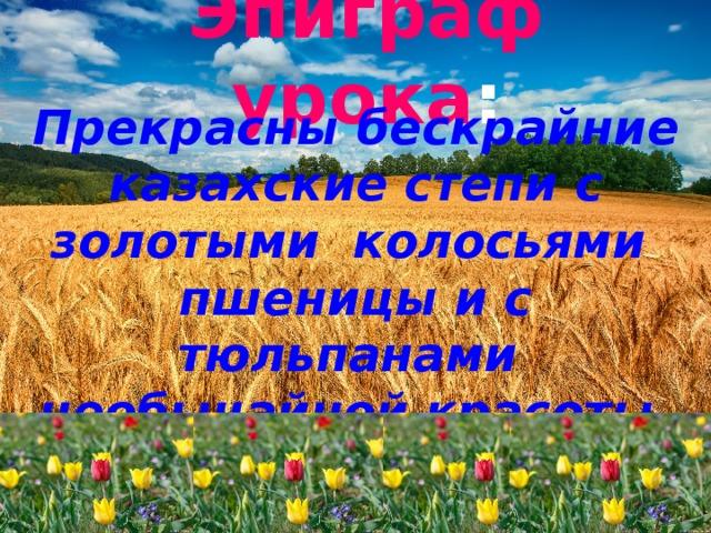 Эпиграф урока : Прекрасны бескрайние казахские степи с золотыми колосьями  пшеницы и с тюльпанами необычайной красоты.