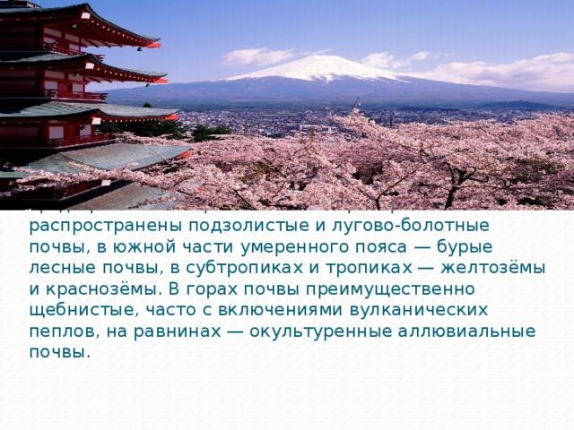 Почвы Японии плохо пригодны для земледелия без их предварительной обработки. На севере страны распространены подзолистые и лугово-болотные почвы, в южной части умеренного пояса — бурые лесные почвы, в субтропиках и тропиках — желтозёмы и краснозёмы. В горах почвы преимущественно щебнистые, часто с включениями вулканических пеплов, на равнинах — окультуренные аллювиальные почвы.