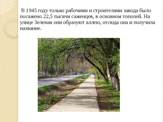 В 1945 году только рабочими и строителями завода было посажено 22,5 тысячи саженцев, в основном тополей. На улице Зеленая они образуют аллею, отсюда она и получила название.