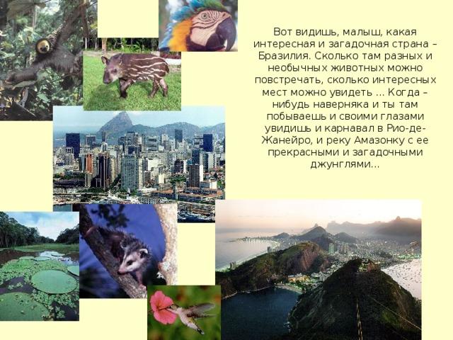 Вот видишь, малыш, какая интересная и загадочная страна – Бразилия. Сколько там разных и необычных животных можно повстречать, сколько интересных мест можно увидеть ... Когда – нибудь наверняка и ты там побываешь и своими глазами увидишь и карнавал в Рио-де-Жанейро, и реку Амазонку с ее прекрасными и загадочными джунглями...