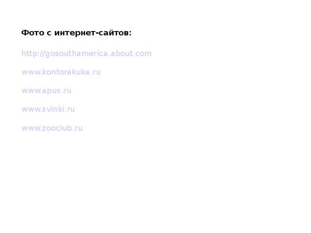 Фото с интернет-сайтов: http://gosouthamerica.about.com www.kontorakuka.ru www.apus.ru www.svinki.ru www.zooclub.ru