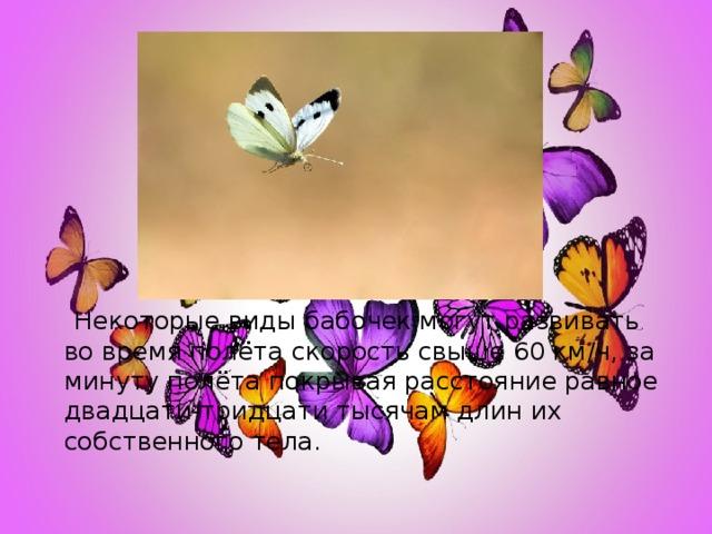 Некоторые виды бабочек могут развивать во время полёта скорость свыше 60 км/ч, за минуту полёта покрывая расстояние равное двадцати-тридцати тысячам длин их собственного тела.
