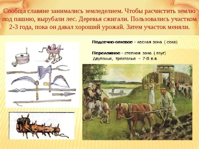 Сообща славяне занимались земледелием. Чтобы расчистить землю под пашню, вырубали лес. Деревья сжигали. Пользовались участком 2-3 года, пока он давал хороший урожай. Затем участок меняли.