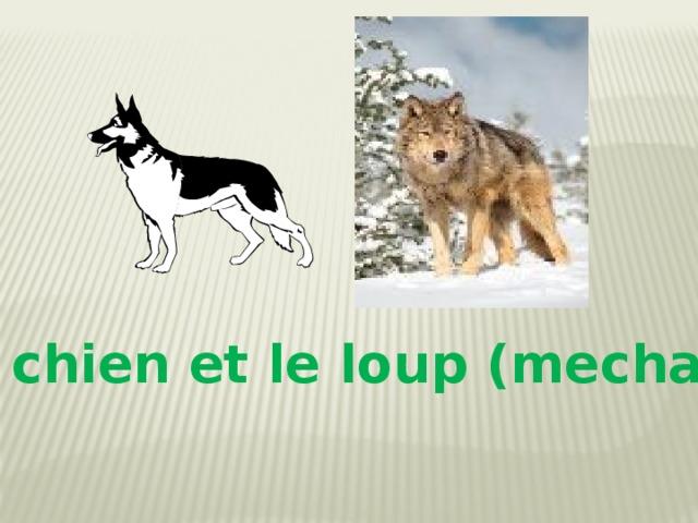 Le chien et le loup (mechant)