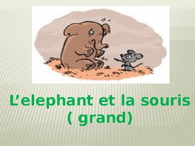 L'elephant et la souris ( grand)