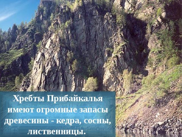 Х ребты Прибайкалья имеют огромные запасы древесины - кедра, сосны, лиственницы.