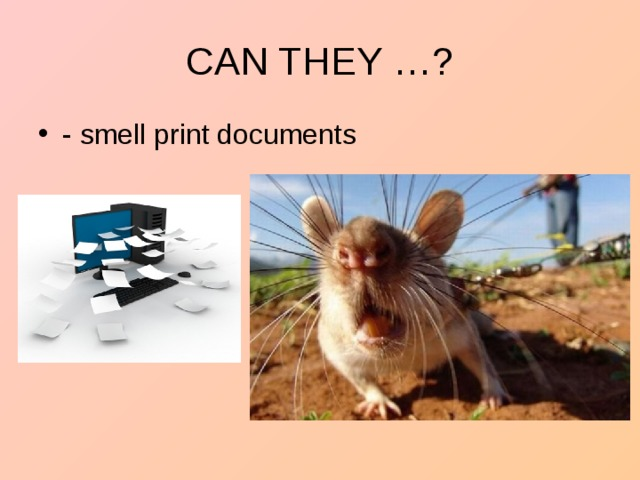 - smell print documents