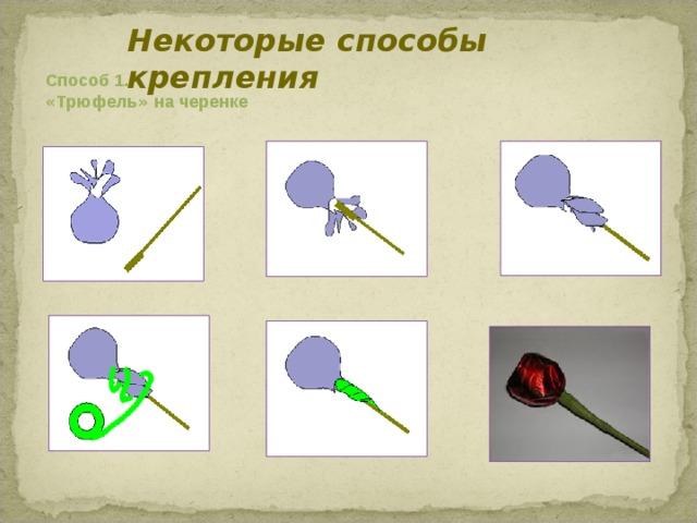 Некоторые способы крепления   Способ 1.  « Трюфель » на черенке