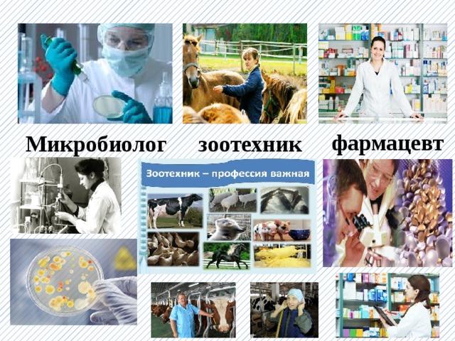 фармацевт Микробиолог зоотехник
