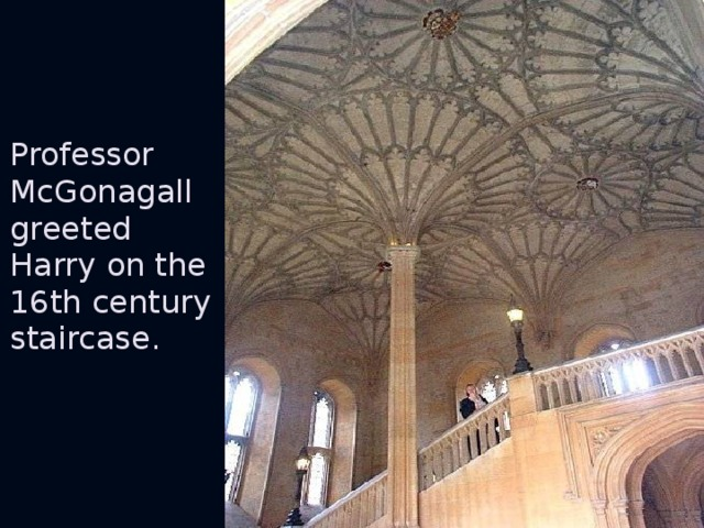 Professor McGonagall greeted Harry on the 16th century staircase.