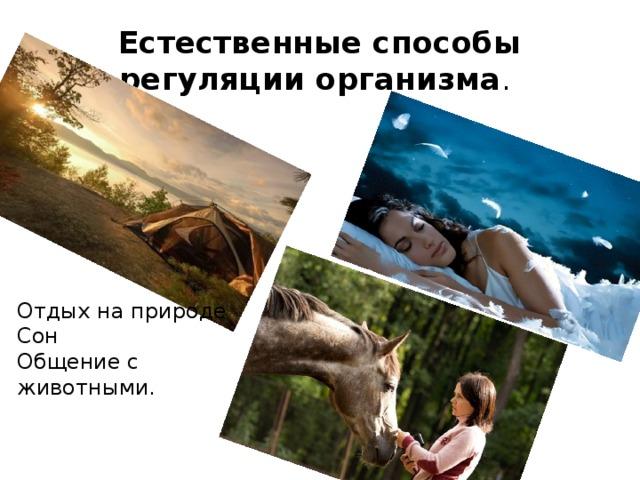 Естественные способы регуляции организма . Отдых на природе Сон Общение с животными.