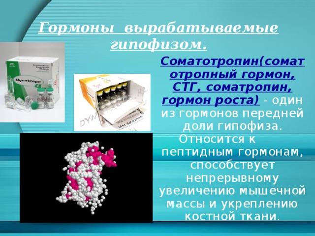 Гормоны вырабатываемые гипофизом. Соматотропин(соматотропный гормон, СТГ, соматропин, гормон роста) - один из гормонов передней доли гипофиза. Относится к пептидным гормонам, способствует непрерывному увеличению мышечной массы и укреплению костной ткани.