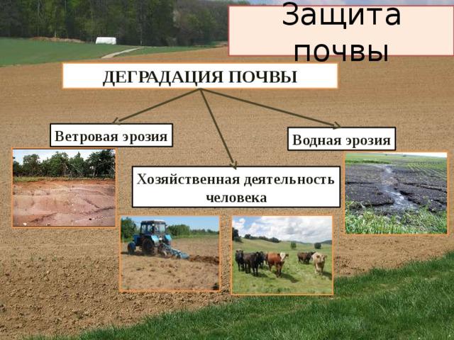 Защита почвы   ДЕГРАДАЦИЯ ПОЧВЫ Ветровая эрозия Водная эрозия Хозяйственная деятельность человека