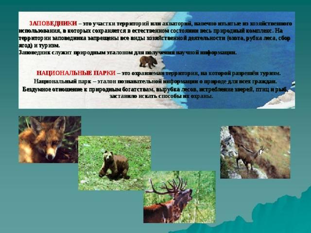 ЗАПОВЕДНИКИ  – это участки территорий или акваторий, навечно изъятые из хозяйственного использования, в которых сохраняется в естественном состоянии весь природный комплекс. На территории заповедника запрещены все виды хозяйственной деятельности (охота, рубка леса, сбор ягод) и туризм.  Заповедник служит природным эталоном для получения научной информации.  НАЦИОНАЛЬНЫЕ ПАРКИ  – это охраняемая территория, на которой разрешён туризм. Национальный парк – эталон познавательной информации о природе для всех граждан. Бездумное отношение к природным богатствам, вырубка лесов, истребление зверей, птиц и рыб, заставило искать способы их охраны.