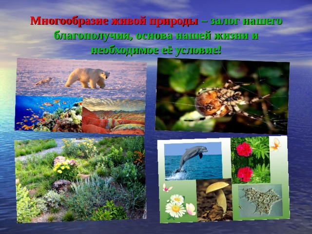 Многообразие живой природы  – залог нашего благополучия, основа нашей жизни и необходимое её условие!