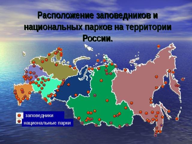 Расположение заповедников и национальных парков на территории России. заповедники национальные парки