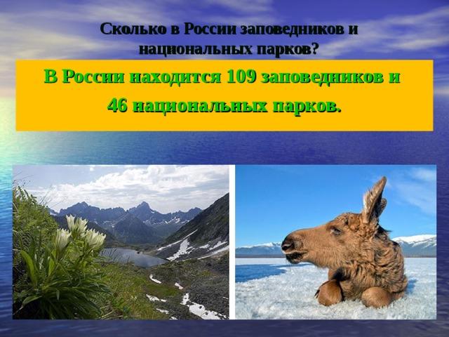 Сколько в России заповедников и национальных парков? В России находится 109 заповедников и 46 национальных парков.