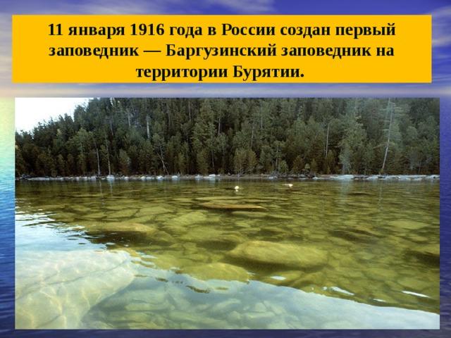 11 января 1916 года в России создан первый заповедник— Баргузинский заповедник на территории Бурятии.