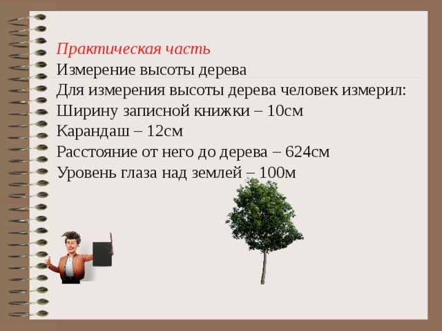 Практическая часть Измерение высоты дерева Для измерения высоты дерева человек измерил: Ширину записной книжки – 10см Карандаш – 12см Расстояние от него до дерева – 624см Уровень глаза над землей – 100м