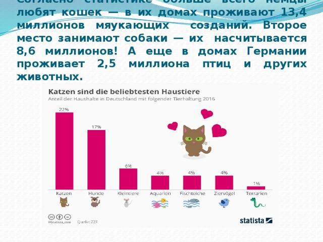 Согласно статистике больше всего немцы любят кошек — в их домах проживают 13,4 миллионов мяукающих созданий. Второе место занимают собаки — их насчитывается 8,6 миллионов! А еще в домах Германии проживает 2,5 миллиона птиц и других животных.
