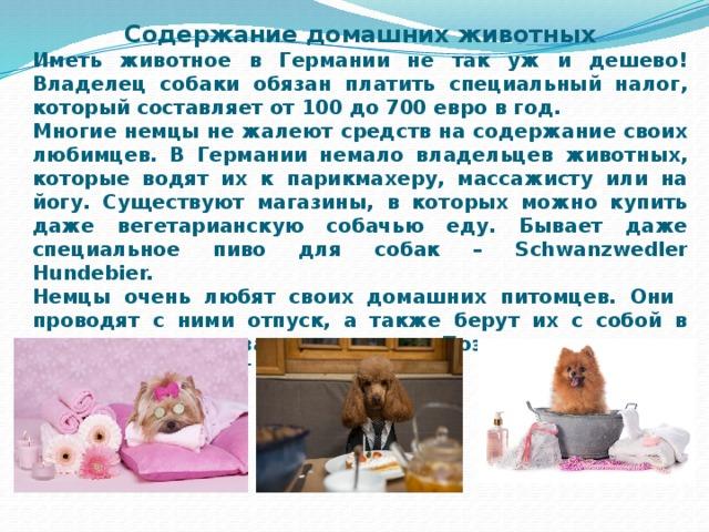 Содержание домашних животных Иметь животное в Германии не так уж и дешево! Владелец собаки обязан платить специальный налог, который составляет от 100 до 700 евро в год. Многие немцы не жалеют средств на содержание своих любимцев. В Германии немало владельцев животных, которые водят их к парикмахеру, массажисту или на йогу. Существуют магазины, в которых можно купить даже вегетарианскую собачью еду. Бывает даже специальное пиво для собак – Schwanzwedler Hundebier. Немцы очень любят своих домашних питомцев. Они проводят с ними отпуск, а также берут их с собой в рестораны или за покупками. Поэтому во многих магазинах стоят специальные поильники для четвероногих.