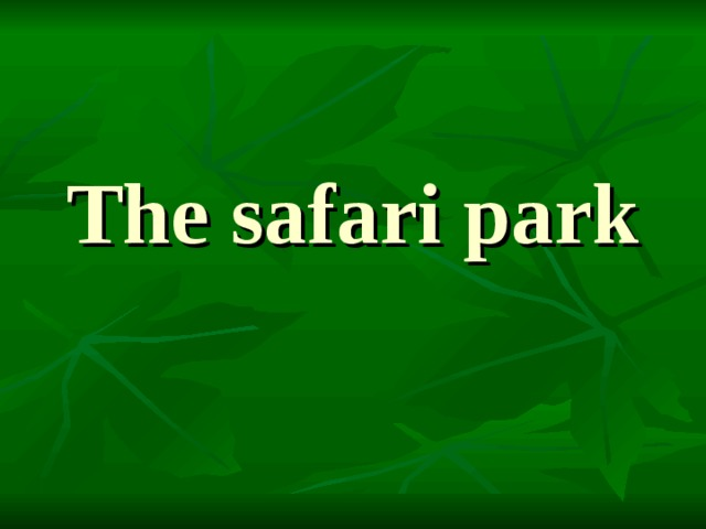 The safari park