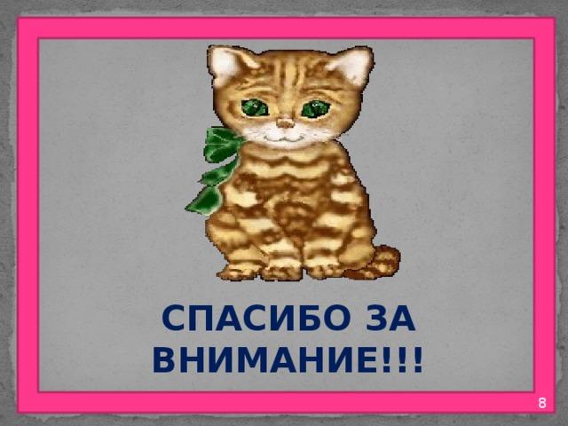 СПАСИБО ЗА ВНИМАНИЕ!!!  8