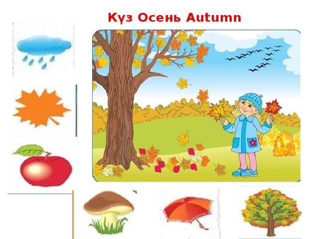 Күз Осень Autumn
