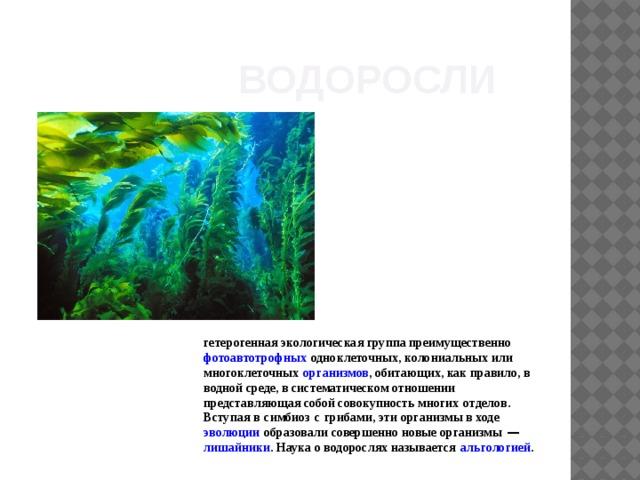 Водоросли  гетерогенная экологическая группа преимущественно  фотоавтотрофных  одноклеточных, колониальных или многоклеточных  организмов , обитающих, как правило, в водной среде, в систематическом отношении представляющая собой совокупность многих  отделов . Вступая в  симбиоз  с  грибами , эти организмы в ходе  эволюции  образовали совершенно новые организмы — лишайники . Наука о водорослях называется  альгологией .
