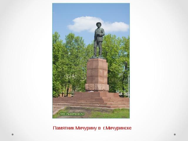 Памятник Мичурину в г.Мичуринске
