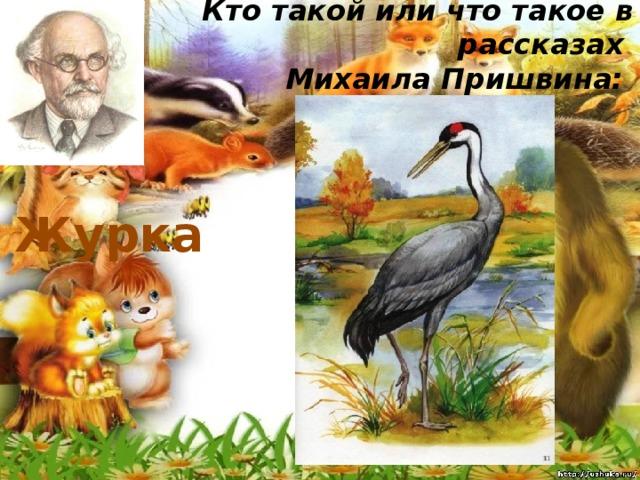 Кто такой или что такое в рассказах  Михаила Пришвина:   Журка
