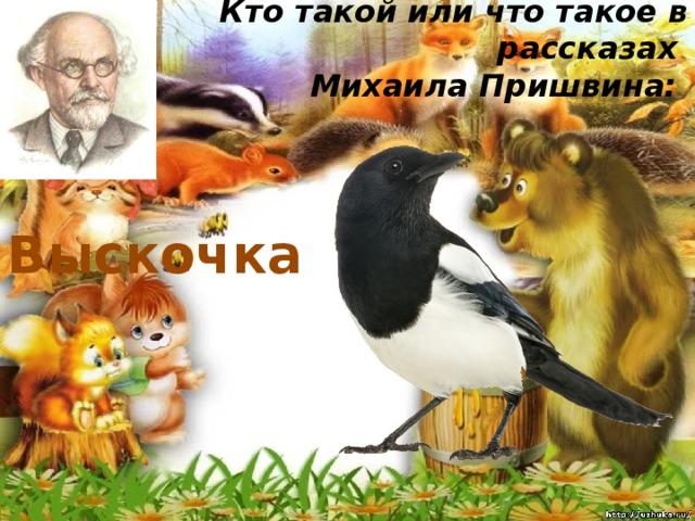 Кто такой или что такое в рассказах  Михаила Пришвина:   Выскочка