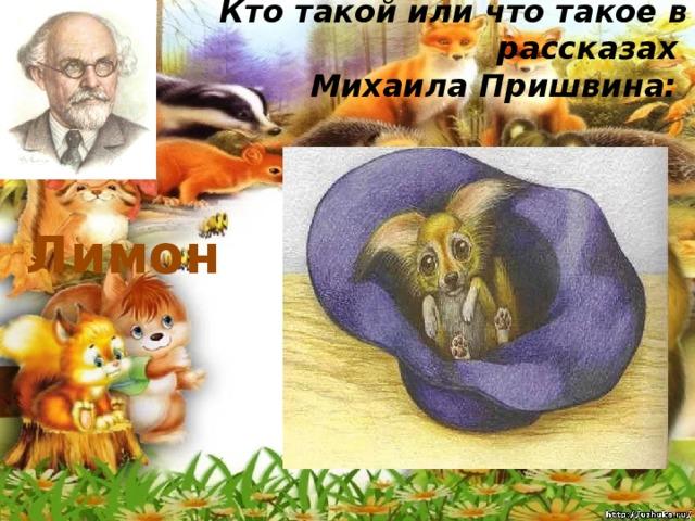 Кто такой или что такое в рассказах  Михаила Пришвина:   Лимон