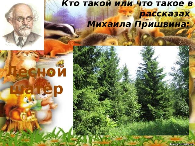 Кто такой или что такое в рассказах  Михаила Пришвина:   Лесной шатёр